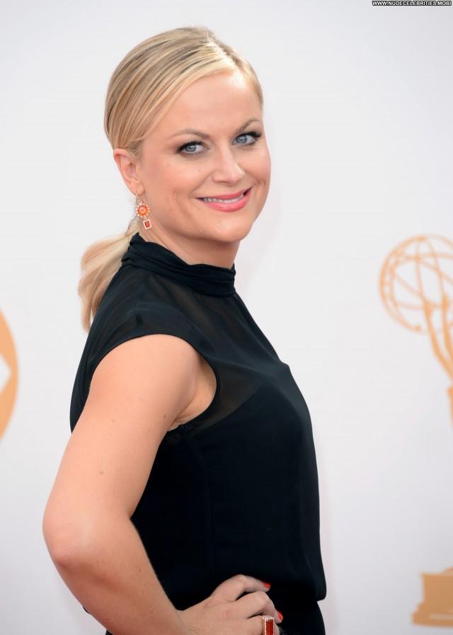 Amy Poehler Primetime Emmy Awards  Beautiful Celebrity Posing Hot Babe